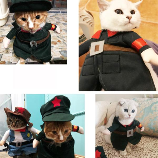 Cute personality funny pet costume
