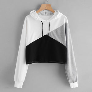 Shaded Cropped Jumper Hoodie