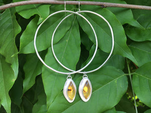 Marquis cut Mexican amber Hoops