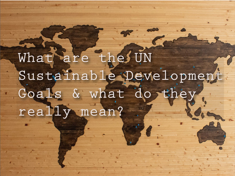 How do social enterprises impact the UN Sustainable Development Goals?