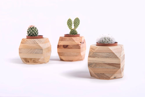 Pallet Wood Succulent Planters (Pack of 3)