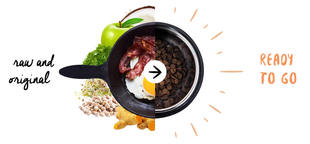 meals for mutts grain free dog food bacon & eggs before and after