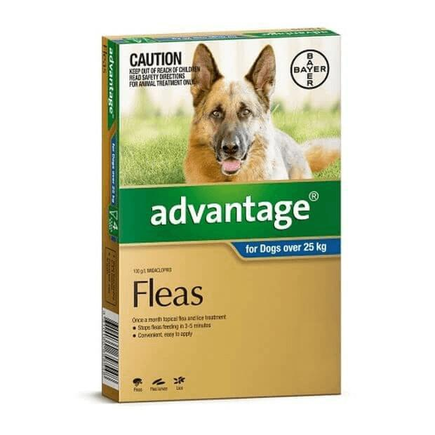 Advantage Flea Treatment for Extra Large Dogs Blue Over 25kg - Epic Pet