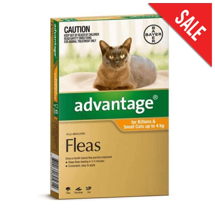 Advantage for Small Cats & Kittens 0-4kg Orange - Epic Pet