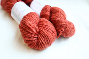 Naturally Dyed Yarn / Worsted / Brazilwood 1
