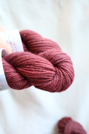 Naturally Dyed Yarn / Worsted / Brazilwood 2