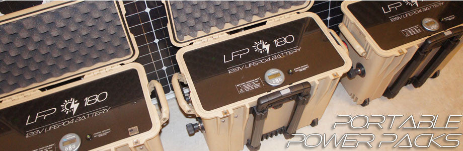 LFP 180 Portable Lithium Battery Module