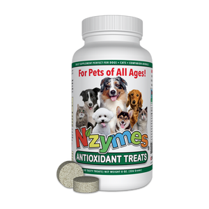 Antioxidant Treats for Pets - By consultation or in-store only