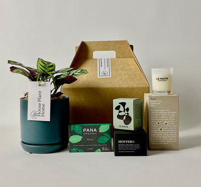 'A Treat Before Sleep' Gift Bundle - House Plant Home