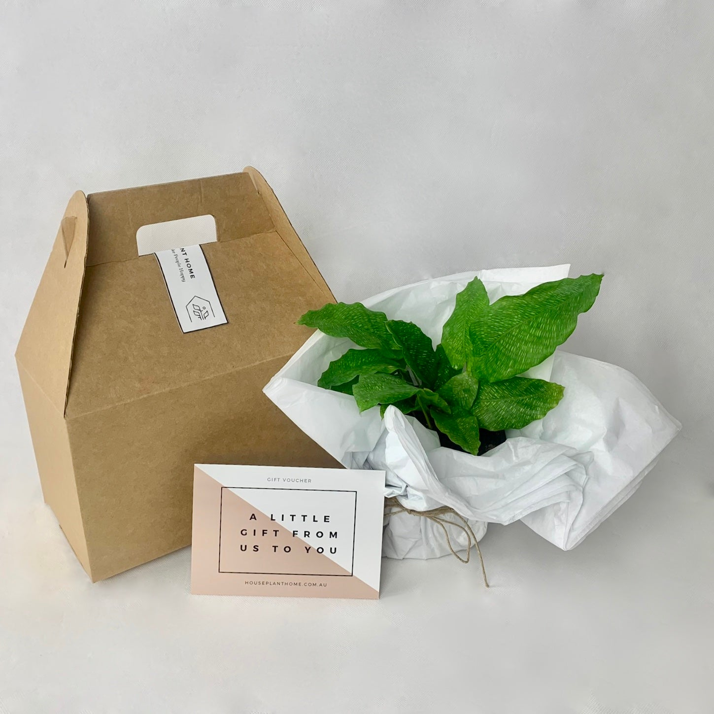 Greenery to Go Monthly Subscription