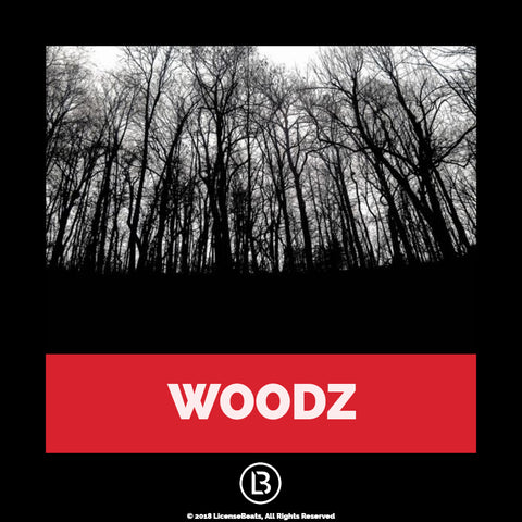 "WOODZ <widgetic-embed id=""5be2a3cdecb2a1646c8b456a"" resize=""fill-width"" width=""350"" height=""50"" autoscale=""on"" adaptive=""414""></widgetic-embed>"