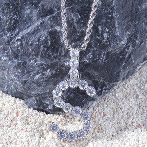 Custom Letter Pendant Necklace (Silver) - Frosty Jewelz
