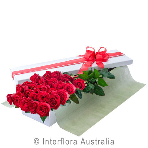Seduction 24 Red 204 - Interflora