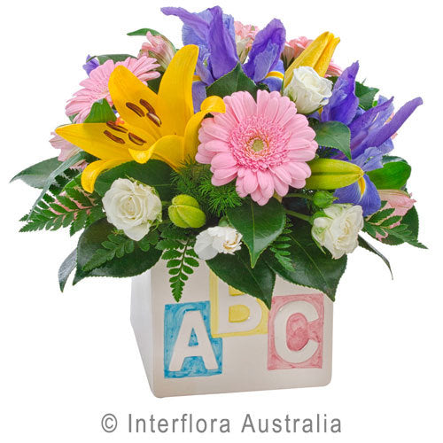 My First ABC 313 - Interflora