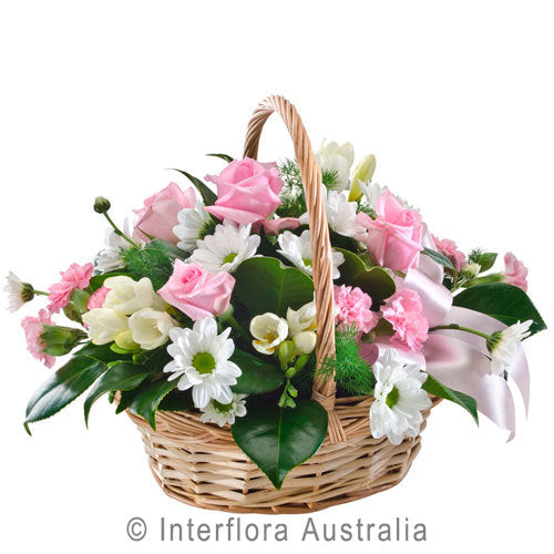 Tenderness 347 - Interflora