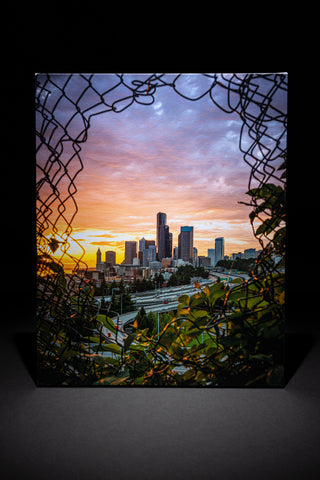 Seattle Through the Fence - Golden Hour