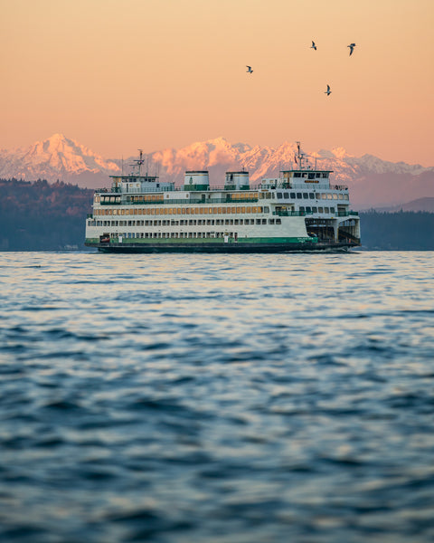 Seattle Ferry with Birds