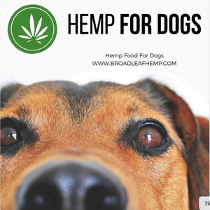 Bulk Hemp Seed Oil for Dogs 22L - Broadleaf Hemp