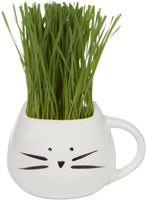 Organic Cat Grass Growing kit with Organic Seed Mix, Organic Soil and Cat Planter. Natural Hairball Control and Remedy. Manufactured in The USA.