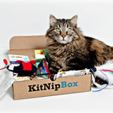 KitNipBox - Monthly Cat Subscription Box of Cat Toys, Treats and Goodies: Happy Cat