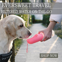 PETKIT Eversweet Travel Dog Waterer