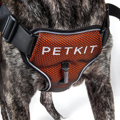 PETKIT ® 'AIR' Quad-Connecting Cushioned Chest Compression and Reflective Breathable Premium Safety Mesh Pet Dog Harness Small Orange/Black