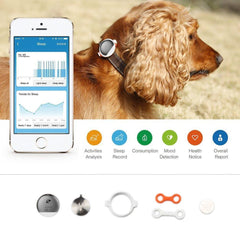 PETKIT ® 'FIT' Lightweight Water-resistant Smart Activity and Mood Monitoring Pet Dog Cat Activity Tracker Monitor Gold