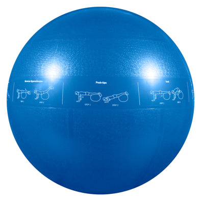 55cm Guide Ball - Pro Grade Stability Ball