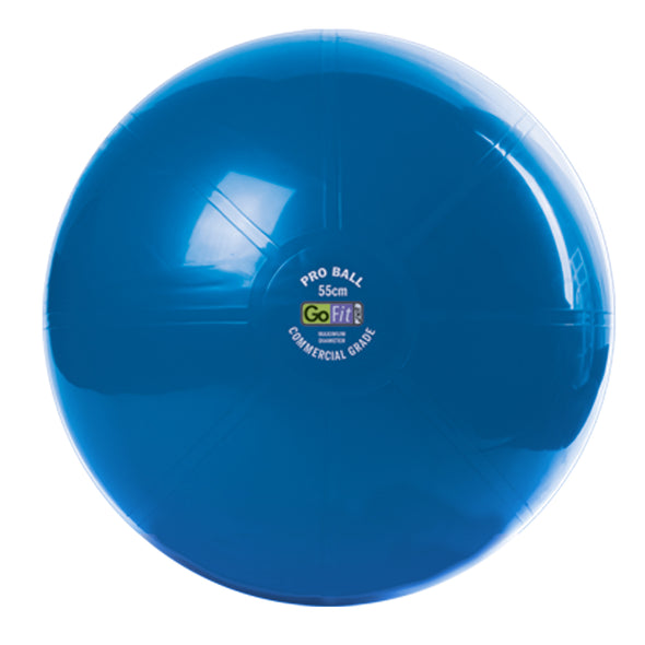55cm Super Ball - Commercial Grade Stability Ball