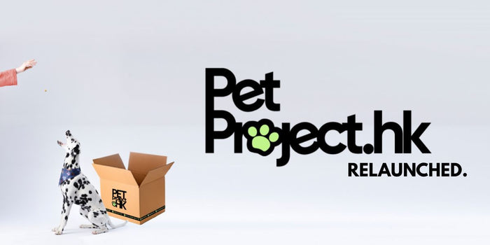 PetProject.HK, Relaunched: New Features