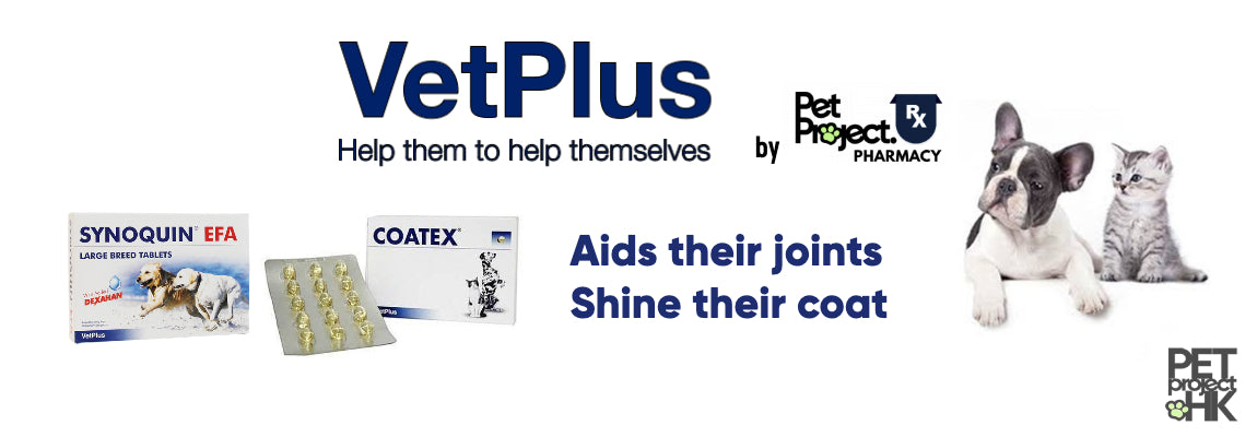 Shop VetPlus products, SYNOQUIN and COATEX EFA on PetProject.HK