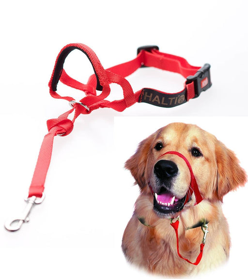 Halti - HeadCollar Red - PetProject.HK