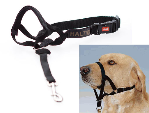 Halti - Head Collar Black - PetProject.HK