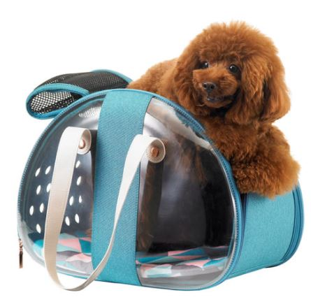 Ibiyaya - The Bubble Hotel Semi-transparentPet Carrier - Turquoise - PetProject.HK