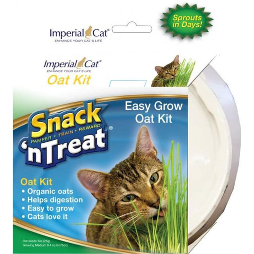 Imperial Cat - Snack 'n Treat - Easy Grow Oat Kit - 1OZ - PetProject.HK