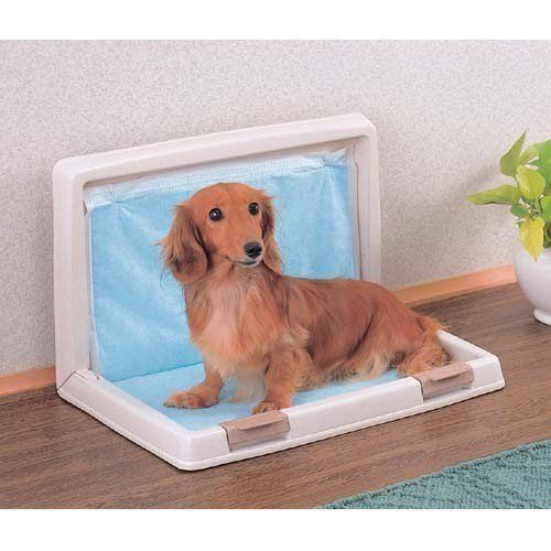 IRIS - Small Foldable Dog Toilet - Lite Blue