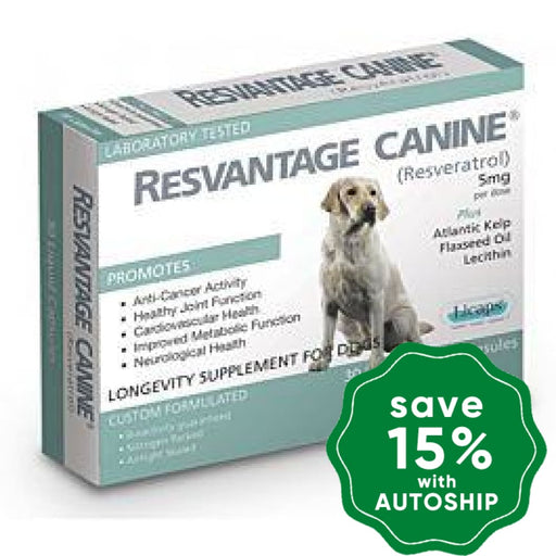 Resvantage - Canine Longevity Supplement For Dogs (30 Capsules) - PetProject.HK