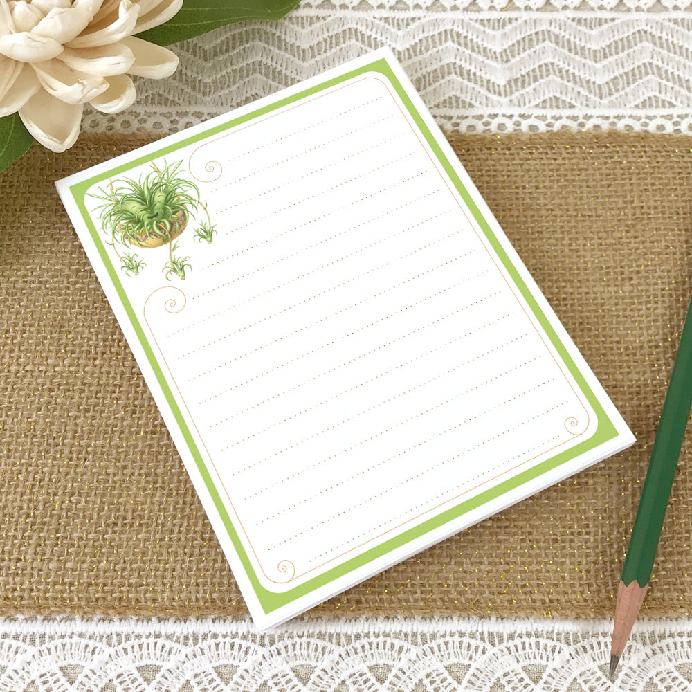 Spider Plant, Flapjack Succulent Cute Memo Notepad