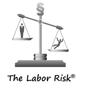 "<span style=""color: #ff9900;""><strong>The Labor Risk</strong></span><br><br>"