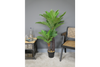 Artificial Fern for eternal youth