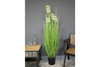 Artificial Dandelion Grass – large for the love