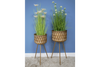 Set of 2 Tall Planters on Stands