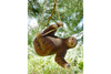 Cute Garden Sloth Hanging From Tree