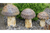Stunning Outdoor Garden Decor Ornate 3 Mushroom Set
