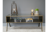TV Cabinet / Coffee Table two in one