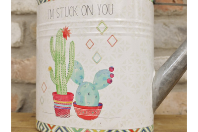 Gorgeous Metal Cactus Lovely Watering Can