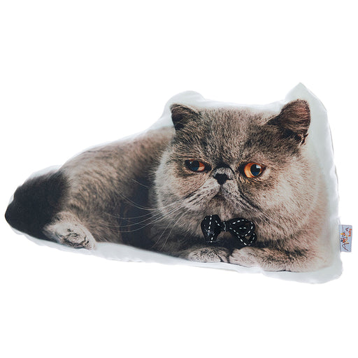 Animal Shaped Pillow, Filled Pillow with Exotic Shorthair Cat Shape