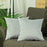 Velvet Light Grey Decorative Throw Pillow Cover Home Decor 18''x 18'' (2 Pcs in set)