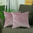 Velvet Blush Pink Decorative Throw Pillow Cover Set (2 Pcs in set)
