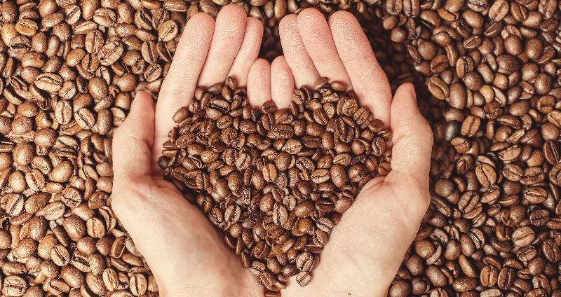Handful of coffee beans, giving back